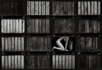 living in a box I von drachenphoto