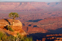Canyonland by dm88