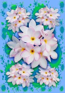 Plumeria Bouquet Exotic Summer Pattern von bluedarkart-lem
