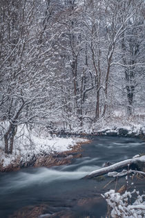 Flusslandschaft im Schnee by jazzlight