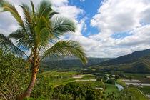 Kauai View von Sylvia Seibl