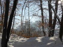 Winter by Rudolf Strasser