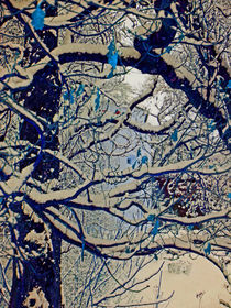 Branches and snow by Michael Naegele