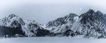 High Tatras - Popradske Pleso von Tomas Gregor