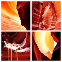 ANTELOPE LIGHTS von Sylvia Seibl