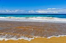 Polihale Beach Time by Sylvia Seibl