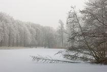 icebound von Erik Mugira
