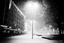 snowfull von micha gruenberg