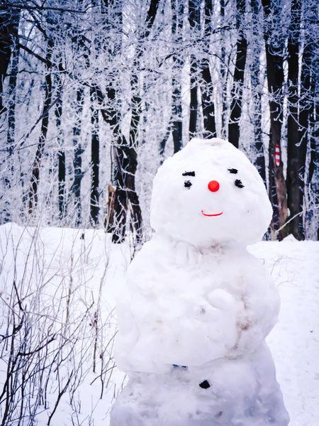 Snowman-forest