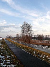 Winterfrieden by voelzis-augenblicke