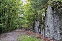 Wandern im Schiefergebirge von Ronald Nickel