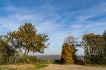 Der Herbst hält Einzug by Ronald Nickel