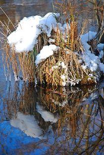 Winterzauber... 36 by loewenherz-artwork