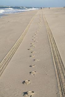 Spuren im Sand - Sylt by stephiii