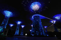 Gardens by the Bay in Singapore by night von stephiii
