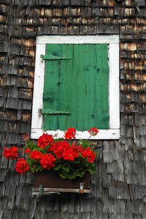 Old wooden house with green shutter andflowers von stephiii