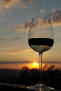Weisswein vor Abendhimmel by stephiii