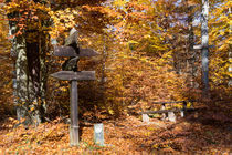 Wegweiser durch den Herbst by Ronald Nickel