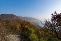 Aussicht im herbstlichen Mittelrheintal by Ronald Nickel