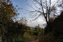 Ein alter Weg im Rheintal von Ronald Nickel