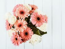 Pink Gerbera Daisy Flowers And White Roses Bouquet von Radu Bercan