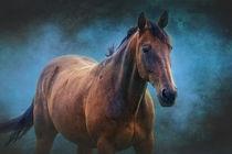 Das Pferd von AD DESIGN Photo + PhotoArt
