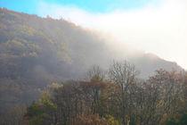 Herbstmorgen by Bernhard Kaiser