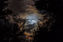 Nacht der Vampire by ropo13
