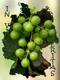 In Vino Veritas - im Wein liegt die Wahrheit von Chris Berger