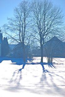Winter am Land... 3 von loewenherz-artwork