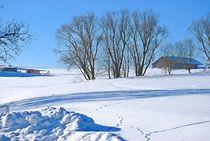 Winter am Land... 4 von loewenherz-artwork