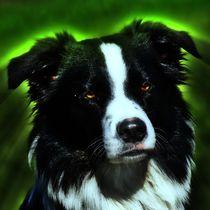 Hunde Dämon by kattobello