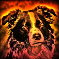 Feuer Hund by kattobello