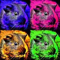 Pop Art Meerschweinchen by kattobello