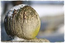 Wooden Ball  von Sandra  Vollmann