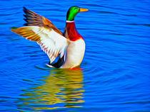 'Duck on the Lake (Digital Art)' von John Wain