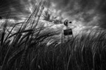 Barley and the pump mono von Rob Hawkins