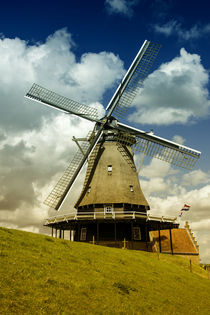 Medemblik mill  by Rob Hawkins
