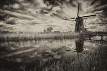Dark Reflections  by Rob Hawkins
