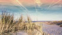 Beach I von moyo