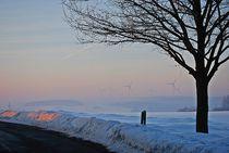 Geburt eines Wintertages... by loewenherz-artwork