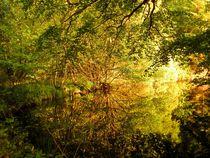 'Waldsee' von atelier-kristen