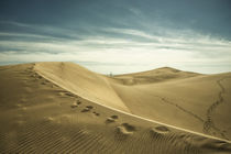 The Sand Dunes of Maspalomas  von Rob Hawkins