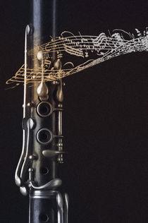 Living for the music by Erich Krätschmer