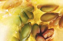 Heart of a cantaloupe