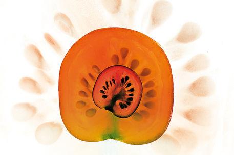 Affo12-just-tomato