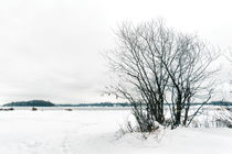 Cold and Snowy Winter Landscape by maxal-tamor