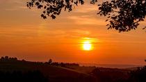 Sonnenuntergang unter Ahornblättern by Ronald Nickel