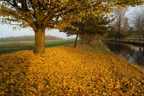 Herbst an der Niers by Frank  Kimpfel