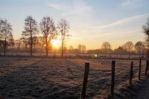 Sonnenaufgang am Niederrhein von Frank  Kimpfel